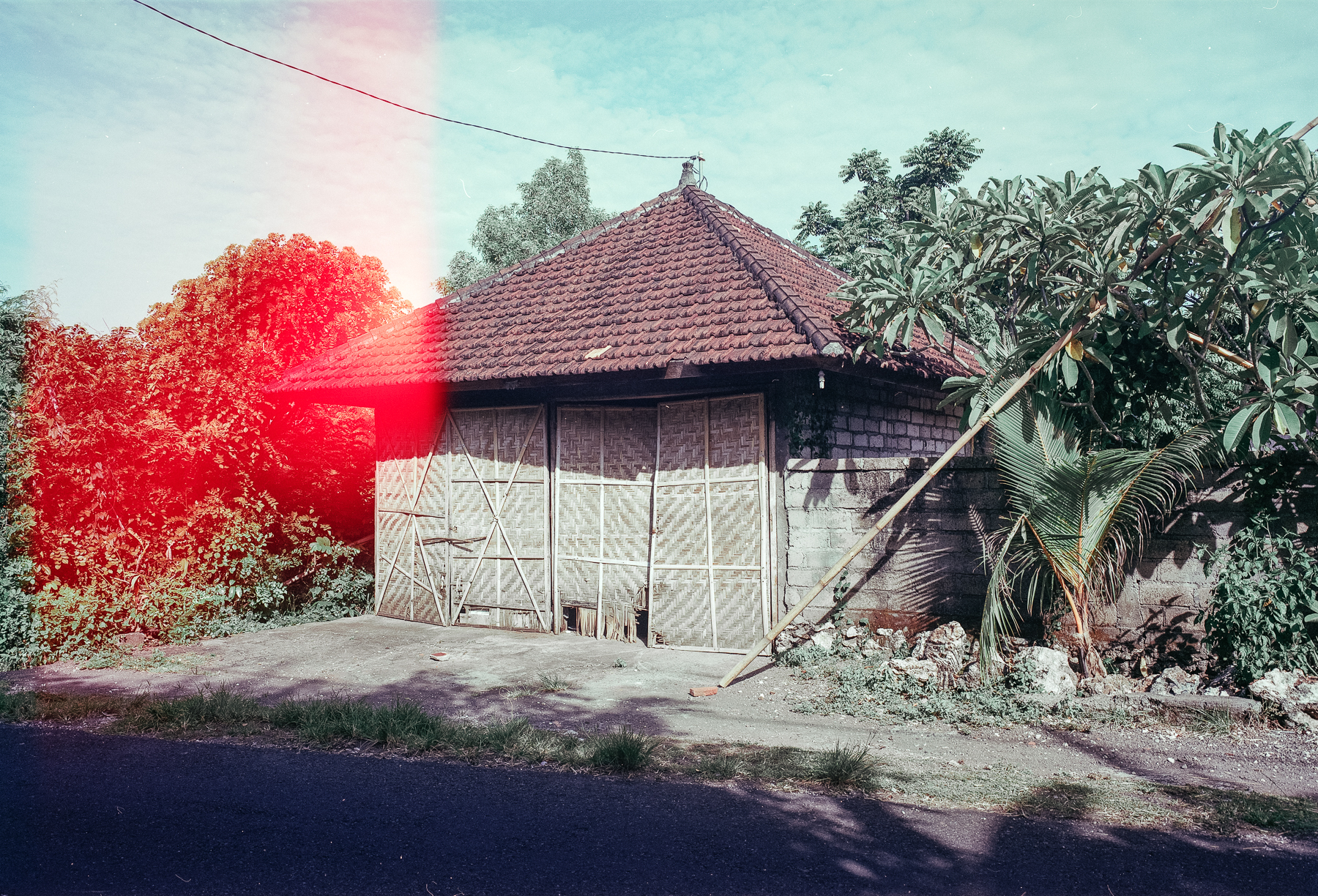 bali_120_colour-4